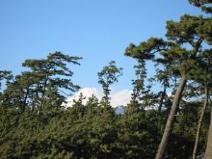 沼津御用邸からの富士山、右の白い物体は雲です